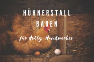 Hühnerhaus bauen