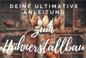 Hühnerstallbau